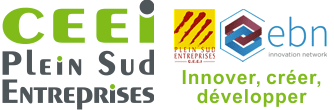 Logo Partenaire CEEI Plein Sud Entreprises Rivesaltes